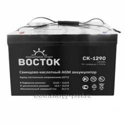 Аккумуляторная батарея Восток СК-1290